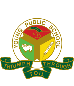 Young Public School logo